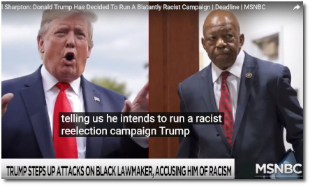 Trump the racist president signals that he intends to run a blatantly racist reelection campaign (29 July 2019)