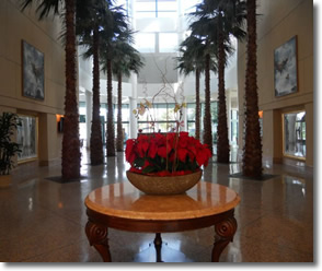 Thornton Hospital Main Lobby, UCSD, La Jolla